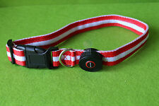 LED-Hunde-Halsband, Größe L