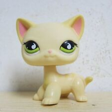 Littlest Pet Shop Animals LPS Yellow & Cream Short Hair Kitty Cat # 733 Rare D1