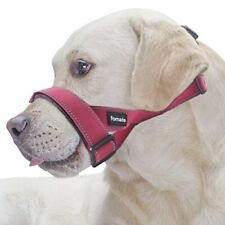 Reflective Safety Dog Muzzle Lead with Adjustable Large Reflective Rose Red