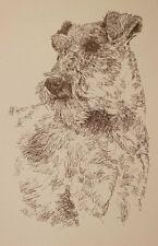Irish Terrier Dog Art Portrait Print #236 Kline Draws dogs name free. Great Gift