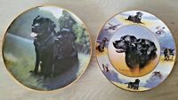 Two Nigel Hemming Plates Black Labrador Sporting Companions & The Sporting Life