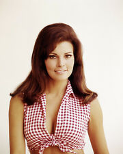 RAQUEL WELCH 11X14 PHOTO CUT OFF DAISY DUKE STYLE TANK TOP BUSTY SEXY PIN UP