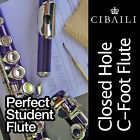 PURPLE and SILVER C foot Flute • BRAND NEW • Case • Perfect For School Student •