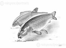 HEADS DOWN Underwater Carp Fishing Art Drawing Print Gift Present Carper Angler