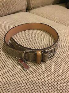 Coach Dog Collar Large
