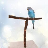 1pc Bird Stand Rack T Shape Portable Bird Branch Perches for Bird Parrot Pet