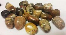 Pebble/ Stone