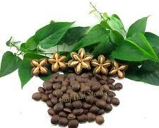 50 Seeds Sacha Inchi,Mountain Peanut,Plukenetia Volubilis,Thai Doa Inca Peanut