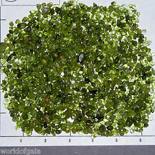 PERIDOT CHIPS B Grade semi-tumbled 4-14mm 1/2 lb bulk stones Forsterite Olivine