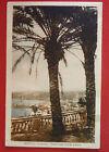 Cartolina Viaggiata 1936 - Imperia Oneglia Panorama tra le Palme