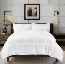 Kingsley trend Down Alternative Quilted Stand Alone Comforter Queen, White