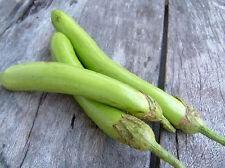 270 SEEDS Eggplant Long green Thai Vegetable Plant