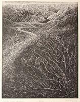 Original Wood Engraving Print Let River Answer Colorado River Desert Landscape