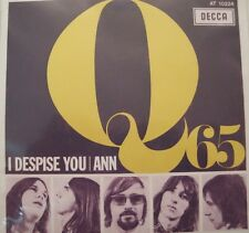 Q65 I despise You/ann 45 eu re PS 60s Dutch Mod/Garage Punk oop L@@K