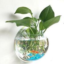 Fish Bowl Aquarium Tank Acrylic Wall Mount Goldfish Plant flower vase 15cmx15cm