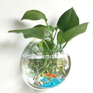 Wall Mounted Hanging Fish Bowl Aquarium Tank Beta Goldfish Plant Home Art Decor