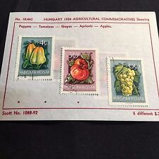 1954 Hungary Postage Stamps Lot of 5 on Old Scott Info Sheets #1088-92