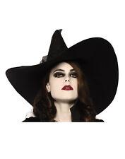 Wide Brim Witch Adult Hat