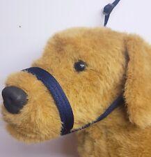Figure of eight Airweb cushion  dog halter headcollar & Lead in one  Navy
