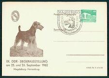 DDR SONDERKARTE 1982 HUNDE-AUSSTELLUNG MAGEDEBURG-HERRENKRUG HUND DOG CHIEN bu81