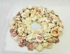 "Sea Shell Mirror 14"" art round vtg handmade beach home decor cottage handmade +"