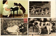 DOGS HUNDEN CHIENS 42 CPA pre-1950