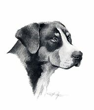 Greater Swiss Mountain Dog Drawing 8 x 10 Art Print Signed by Artist Djr