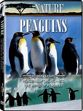 NEW DVD- NATURE -  PENGUINS OF THE  ANTARCTIC + THE WORLD OF PENGUINS - DOUBLE