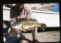 1950s red border kodachrome Photo slide Man with caught fish