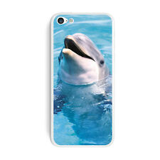 Dolphin - Protective Skin Sticker Case for Apple iPhone 5C - Set of 2