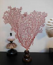 Gorgone rouge sur socle bois cabinet de curiosité