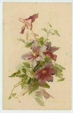 C. Klein, Flowers, Clematis Early Chromo Art Postcard #2, C042