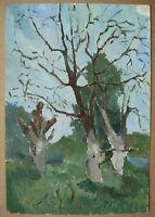 Russian Ukrainian Soviet Oil Painting Impressionism