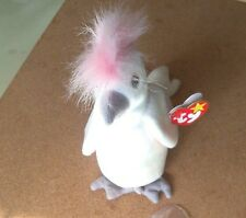 TY BEANIE BABIES-- KUKU A WHITE BIRD --MINT CONDITION--1998 P.E. RETIRED-- PLUSH