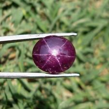 9.80 Ct Natural star ruby 6 rays deep pinkish red oval cabochon loose gemstones