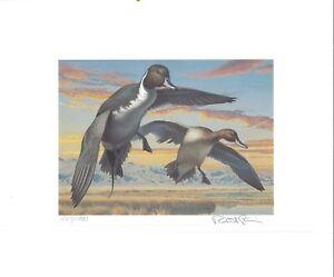 Nevada #6 1984 État Canard Tampon Imprimé Pintails Par Robert Steiner Liste