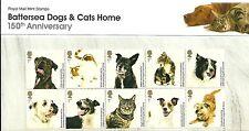 Cats British Stamp Presentation Packs