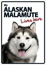 Alaskan Malamute Lives A5 Here Sign
