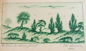 "Drawing Otto Hallier 1946: Die Heide At Fallingbostel "" 14 X 22 CM"