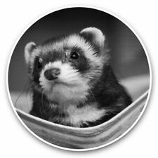 2 x Vinyl Stickers 30cm (bw) - Ferret Hammock Pet Rodent Animal #37246