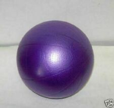 Mini Exercise Ball - Great for Pilates, Mat Workouts and Inner thighs!
