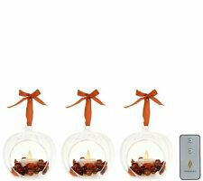 Luminara Set of Three Glass Ornaments with Flameless Tealight Candle - Harvest