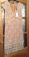 BNWT🌹Next🌹Size 12 Tall Women's Ivory Lace Mix Floral Dress Beige Lining New