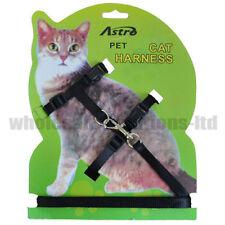 Laisses et harnais noir pour chat