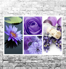 STUNNING PURPLE FLORAL CANVAS COLLAGE #4 QUALITY FLOWERS WALL ART BOX CANVAS