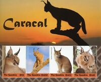 Gambia 2019 MNH Caracal 4v M/S Mammals Big Cats Wild Animals Stamps