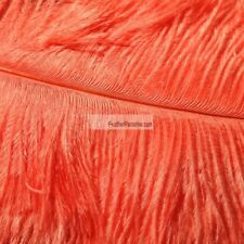 Coral Ostrich Feathers 22-24 inches 12 Pieces Male Plume Wing Feathers