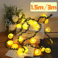 Lemon Slices LED String Light Fairy Lights Photo Wedding Home Decor Lamp Y