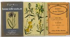 Botanik Blumen Kräuter Heilpflanzen Atlas Bilderbogen um 1920
