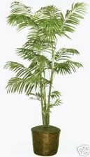 9.5ft ARTIFICIAL ARECA PALM TREE SILK NOT POTTED no basket Date 8 7 6 9 Phoenix